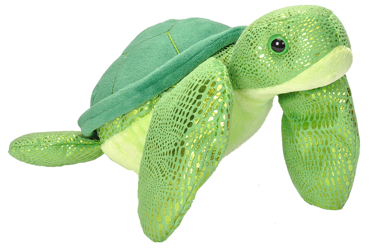Sparkly Green Turtle 10 Quot 187 Care For Hedland