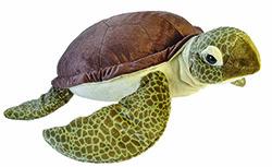 Jumbo sea turtle