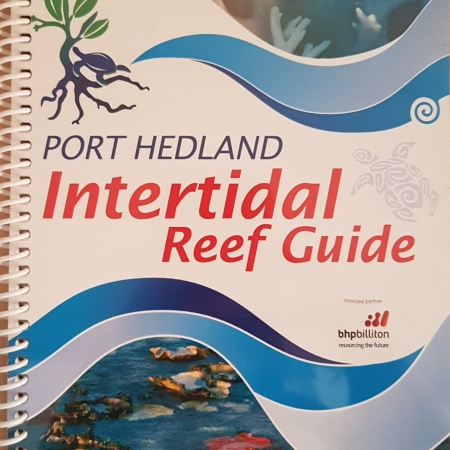 Intertidal reef guide