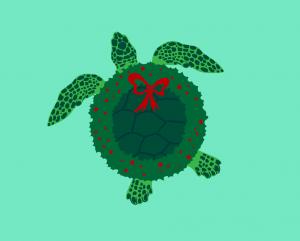 Xmas turtle